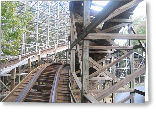 Kings Dominion - Grizzly - 01132 Greeting Card by DC Photographer