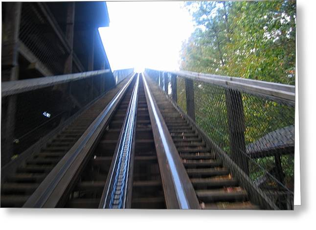 Kings Dominion - Grizzly - 12121 Greeting Card by DC Photographer