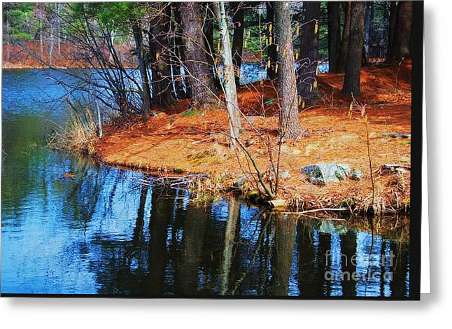 Kingsbury Pond Medfield Greeting Card by Marcus Dagan