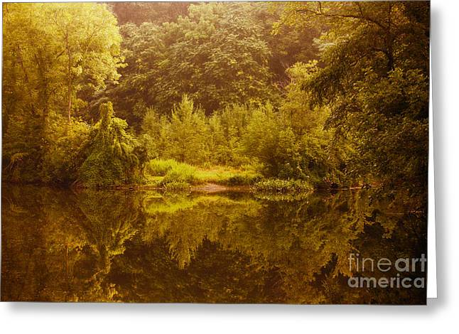 Kingston Greeting Cards - Kingston Mill Landscape Greeting Card by Davidmark Images