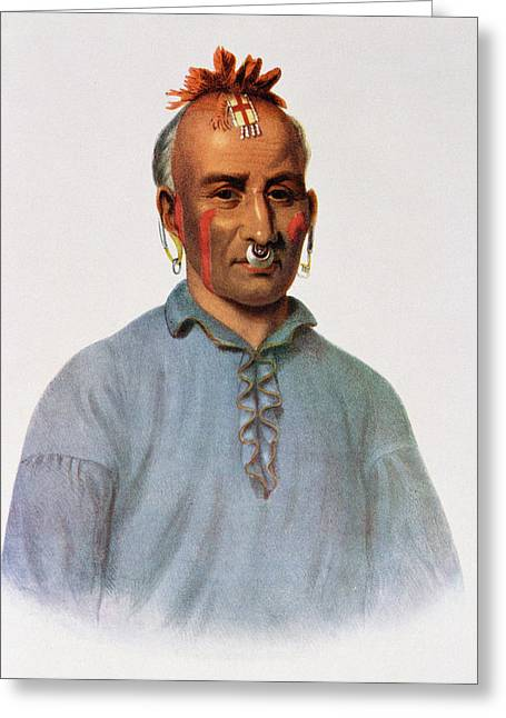 Body Piercing Greeting Cards - Kish-kal-wa, A Shawnee Chief, Illustration From The Indian Tribes Of North America, Vol.1 Greeting Card by American School