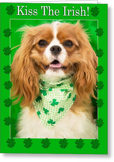 Doggies Greeting Cards - Kiss The Irish Cavalier King Charles Spaniel Greeting Card by Daphne Sampson
