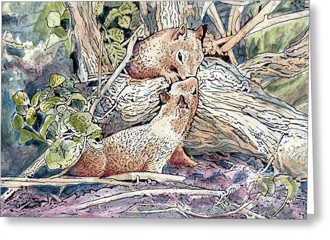 Big Sur California Mixed Media Greeting Cards - Kissing Squirrels  Greeting Card by Diana Cardosi-Bussone