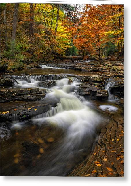 Fallen Leaf Greeting Cards - Kitchen Creek Cascades Greeting Card by Mark Papke