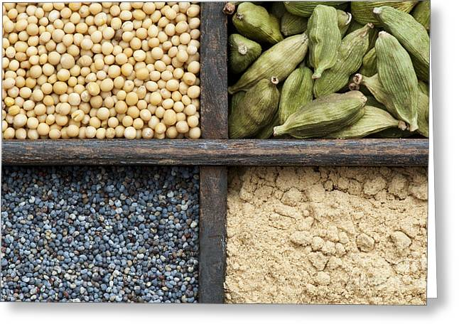 Curry Greeting Cards - Kitchen Spice Grid  Greeting Card by Tim Gainey