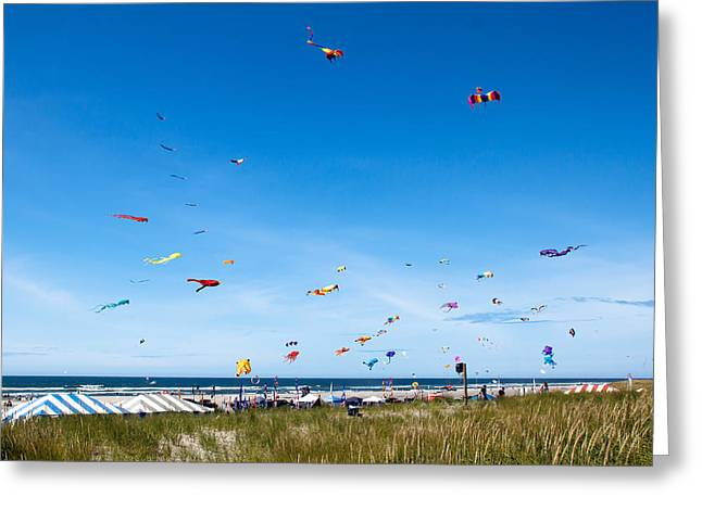 Kites Festival Greeting Cards - Kite Festial Greeting Card by Robert Bales