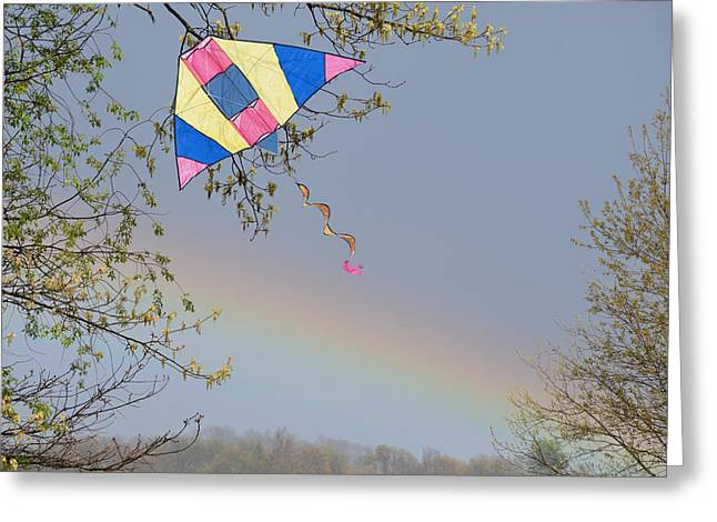 Kite Greeting Cards - Kite in a Tree Greeting Card by Linda Troski