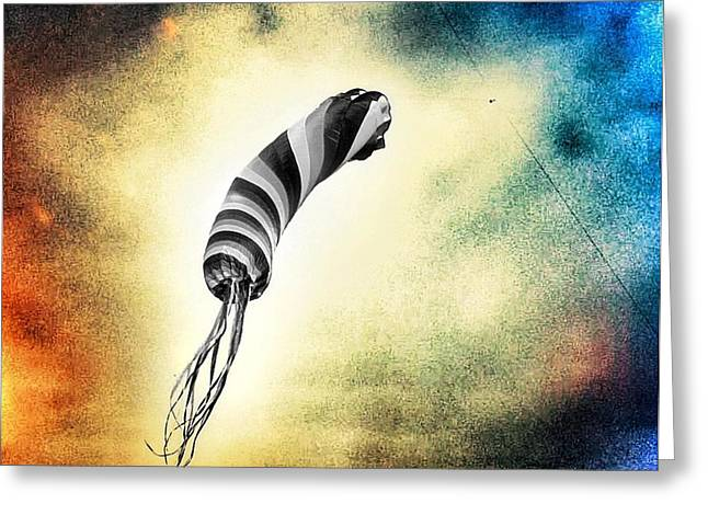Black Kites Greeting Cards - Kite in the Wind Greeting Card by Marianna Mills