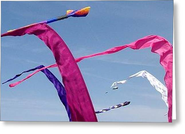 Kite Greeting Cards - Kites 3 Greeting Card by Elizabeth Sullivan