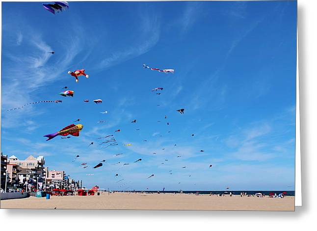 Festivities Greeting Cards - Kites Greeting Card by Francie Davis