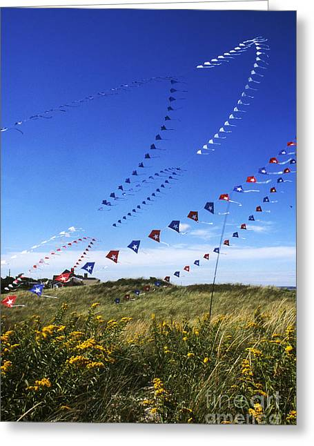 Kite Greeting Cards - Kites On Cape Cod Greeting Card by Eunice Harris