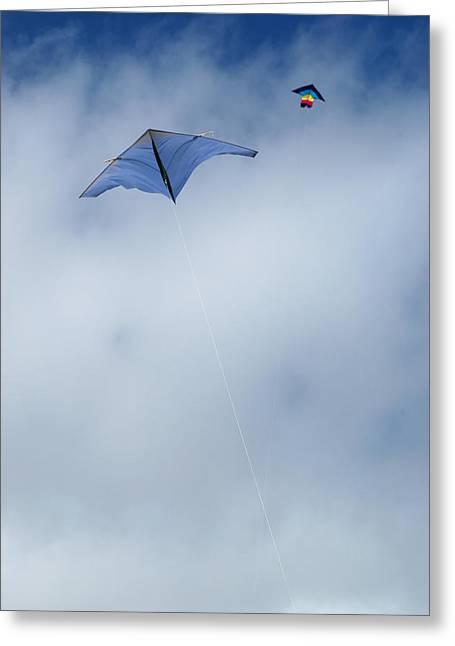 Kite Greeting Cards - Kites on high Greeting Card by Rob Huntley