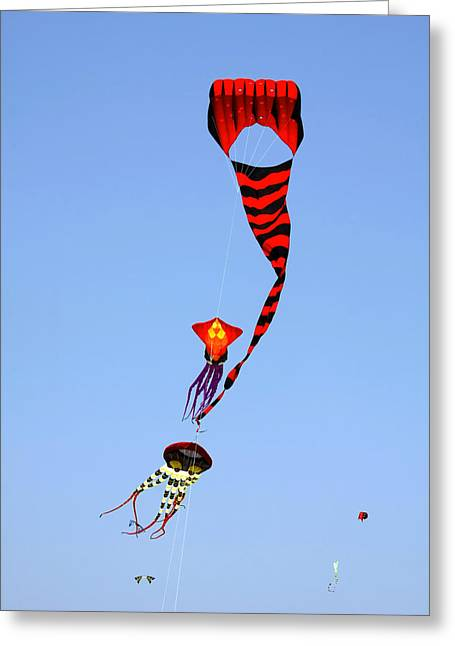 Red Greeting Cards - Kites over Baja California Greeting Card by Christine Till