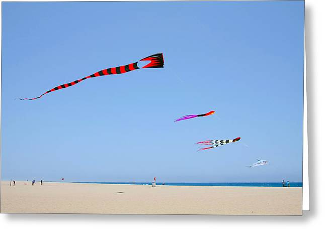 Breezy Greeting Cards - Kites over Cabo Greeting Card by Christine Till