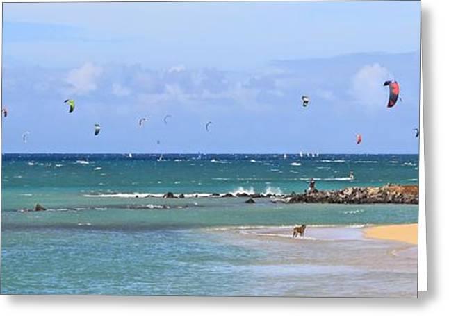 Kite Surfing Greeting Cards - KiteSurfin Kanaha Beach Greeting Card by DJ Florek