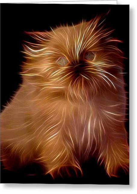 Kitten Prints Greeting Cards - Kitten Greeting Card by Michael Vicin