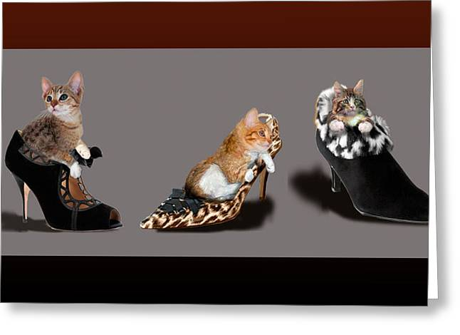 Funny Shoe Greeting Cards - Kittens in designer ladies Shoes Greeting Card by Gina Femrite