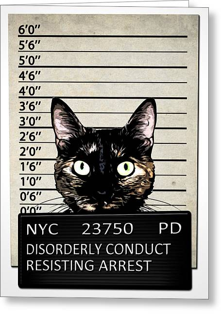 Jail Greeting Cards - Kitty Mugshot Greeting Card by Nicklas Gustafsson