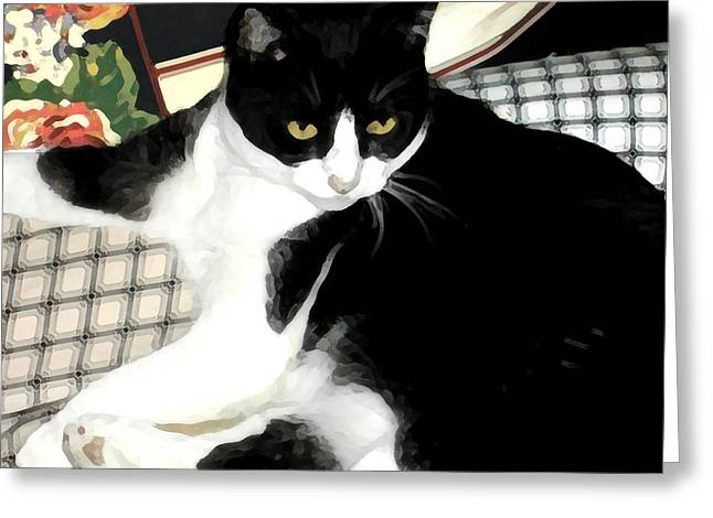 Tuxedo Digital Art Greeting Cards - Kitty on His Perch Greeting Card by Jeanne A Martin