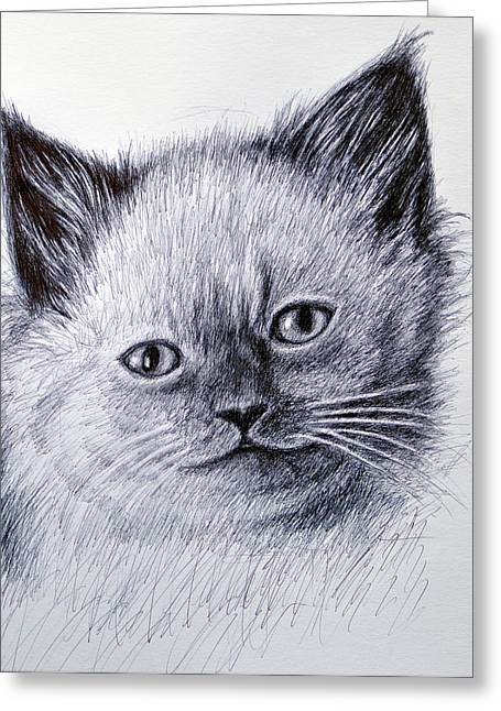 Pictures Of Cats Greeting Cards - Kitty Greeting Card by Rick Hansen