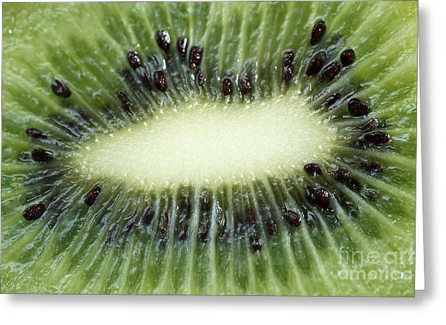Kiwi Greeting Card by Darren Fisher