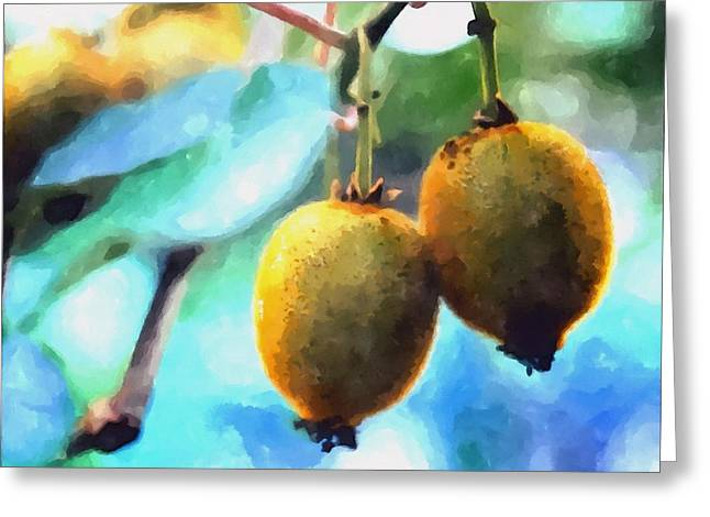 Kiwi Fruit Ripening On A Tree Greeting Card by Lanjee Chee