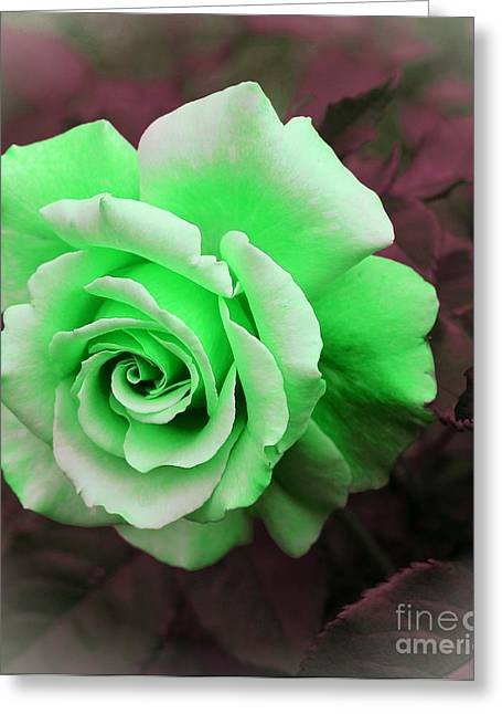 Kiwi Lime Rose Greeting Card by Barbara Griffin