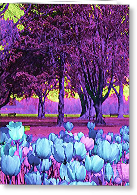 Fushia Greeting Cards - Kiwi Sky With Tulips Greeting Card by Ann Johndro-Collins