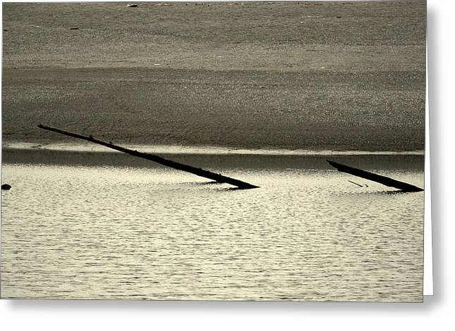 Driftwood Greeting Cards - Klamath River Mouth - A bliss place Greeting Card by Christine Till