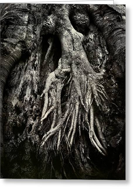 Tree Roots Greeting Cards - Kneeling at the Feet of the Green Man Greeting Card by Rebecca Sherman