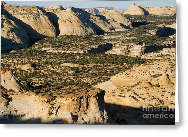 Geobob Greeting Cards - Knobs Arc and Navajo Sandstone at Eagle Canyon Overlook San Rafael Swell Utah  Greeting Card by Robert Ford