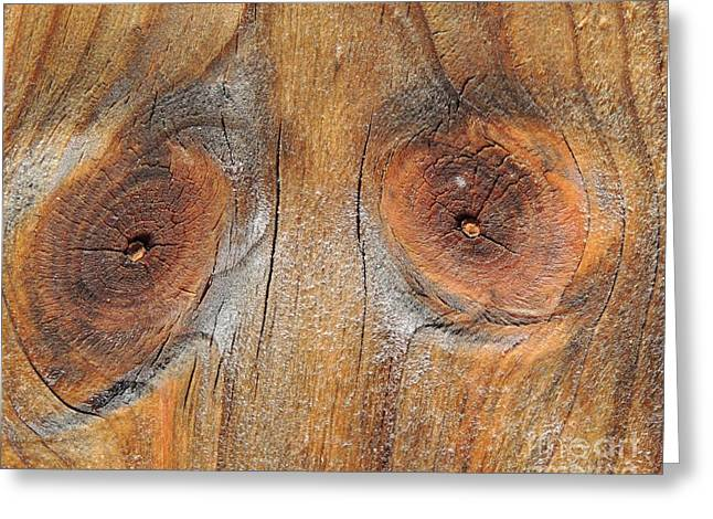 Knothole Greeting Cards - Knothole Face Greeting Card by Kathy Brown
