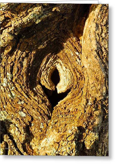 Locus Greeting Cards - Knothole or Eye Greeting Card by Nick Kirby