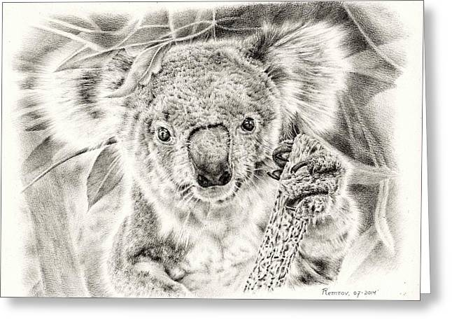 Paws Drawings Greeting Cards - Koala Garage Girl Greeting Card by Heidi Vormer
