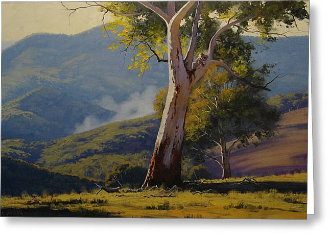 River Paintings Greeting Cards - Koala in the Tree Greeting Card by Graham Gercken