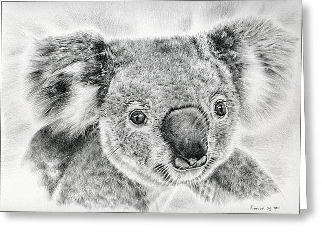 Twinkle Greeting Cards - Koala Newport Bridge Gloria Greeting Card by Heidi Vormer