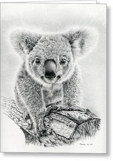 Soft Drawings Greeting Cards - Koala Oxley Twinkles Greeting Card by Heidi Vormer