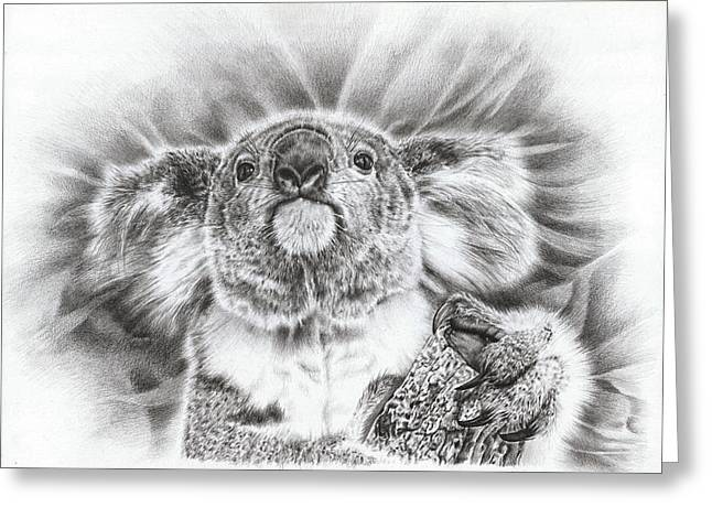 Gray Hair Drawings Greeting Cards - Koala Roto Princess Greeting Card by Heidi Vormer