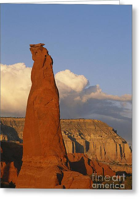 Kodachrome Greeting Cards - Kodachrome Basin, Utah Greeting Card by George Ranalli