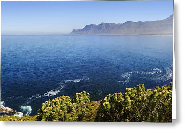 Reserve Greeting Cards - Kogelberg area view over ocean Greeting Card by Johan Swanepoel
