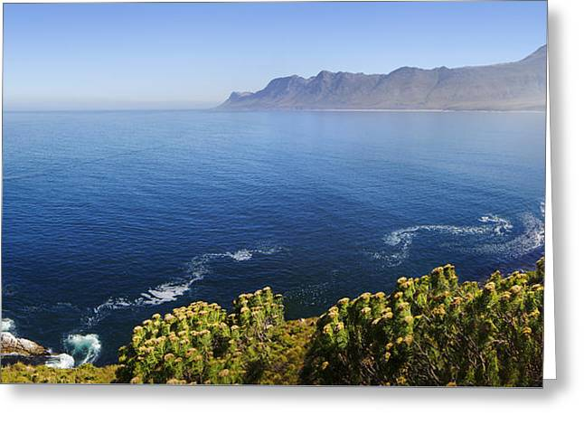False Greeting Cards - Kogelberg area view over ocean Greeting Card by Johan Swanepoel
