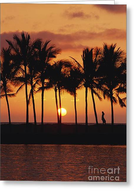 Big Chill Greeting Cards - Kohala Dreams Greeting Card by Russ Bishop