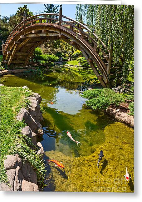 Willow Lake Greeting Cards - Koi Garden - Japanese Garden at the Huntington Library. Greeting Card by Jamie Pham