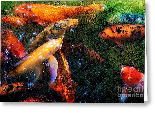 Beneath The Surface Greeting Cards - Koi Pile Greeting Card by Jeanette Brown