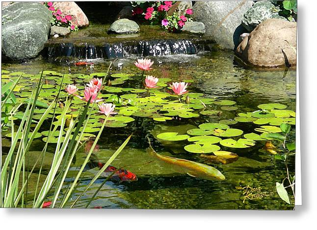 Water Lily Pond Greeting Cards - Koi Pond Greeting Card by Doug Kreuger