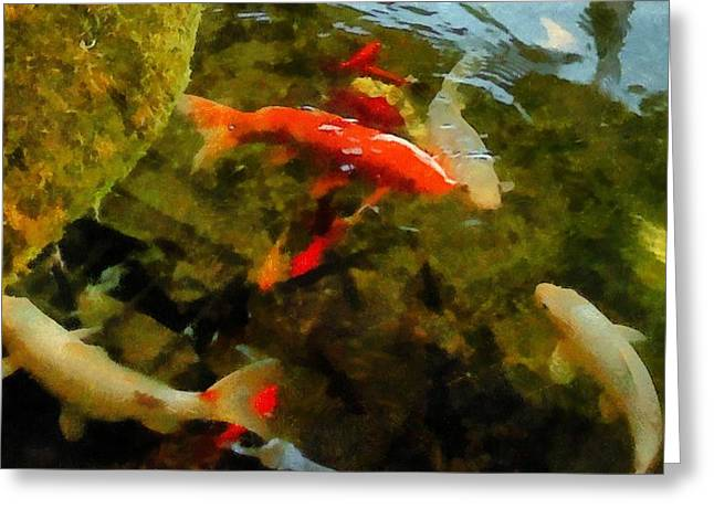 Goldfish Digital Greeting Cards - Koi Pond Greeting Card by Michelle Calkins