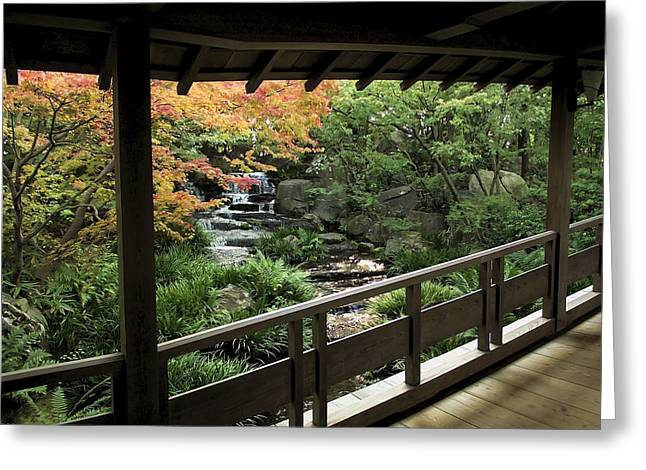 Shogun Photographs Greeting Cards - Kokoen Garden - Himeji City Japan Greeting Card by Daniel Hagerman