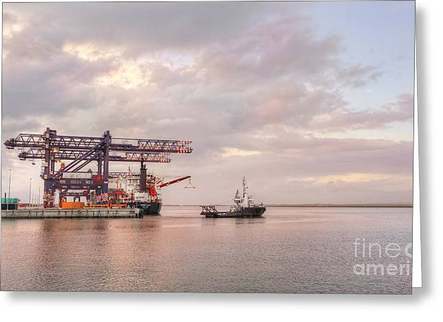 Tiger Economy Greeting Cards - Kokopo Chief Cargo Ship at Port Botany Greeting Card by Leah-Anne Thompson