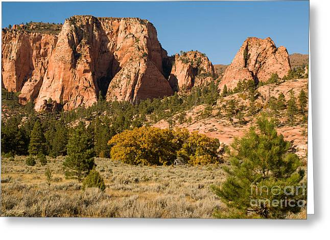 Geobob Greeting Cards - Kolob Cliffs and Sagebrush Zion National Park Utah Greeting Card by Robert Ford