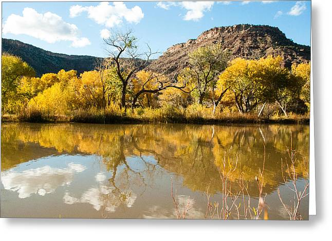 Geobob Greeting Cards - Kolob Pond in Fall Zion National Park Utah Greeting Card by Robert Ford